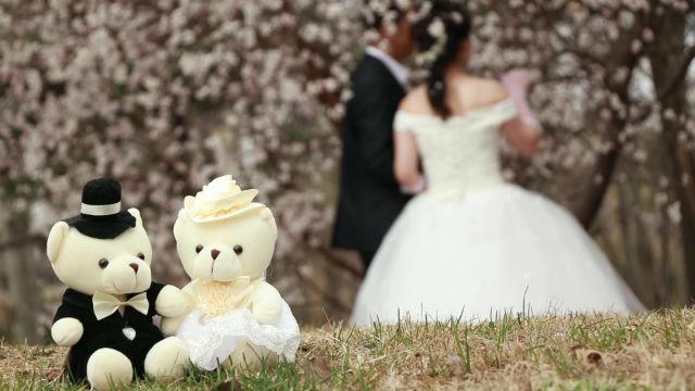 關於婚姻的聖經金句,學習在婚姻中順服神的主宰